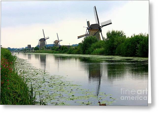 Nederland Greeting Cards - Peaceful Dutch Canal Greeting Card by Carol Groenen