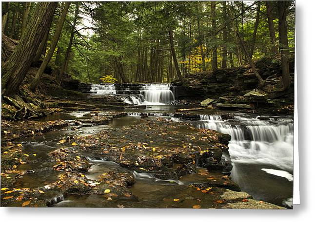 Nature Scene Greeting Cards - Peaceful Flowing Falls Greeting Card by Christina Rollo