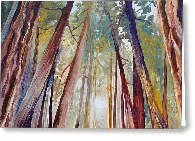 Santa Cruz Art Greeting Cards - Peaceful Forest Greeting Card by Cedar Lee