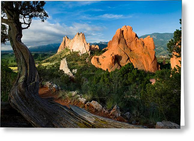 Garden Of The Gods Greeting Cards - Peaceful Garden Greeting Card by John Hoffman