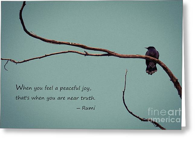 Levi Greeting Cards - Peaceful Joy Greeting Card by Stella Levi