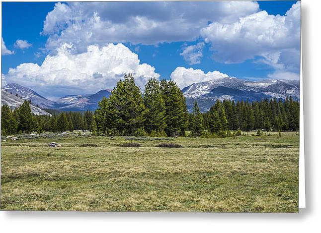 Paradise Meadow Greeting Cards - Peaceful Meadow Scene Greeting Card by Joseph S Giacalone
