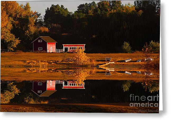 Fort Collins Greeting Cards - Peaceful Morning Greeting Card by Steven Reed