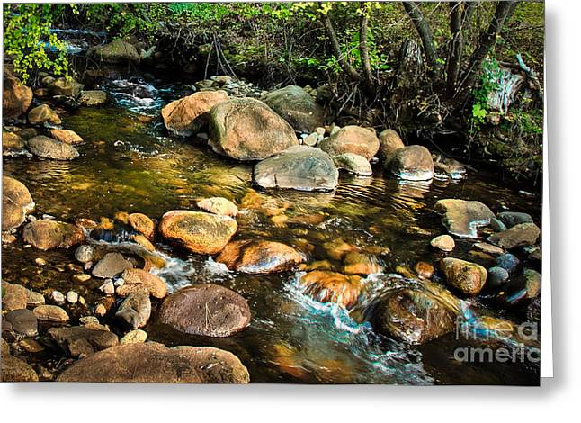 Picturesqueness Greeting Cards - Peaceful Mountain Stream Greeting Card by Robert Bales