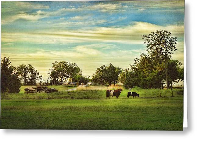 Peaceful Scene Greeting Cards - Peaceful Pasture - landscape  Greeting Card by Ann Powell