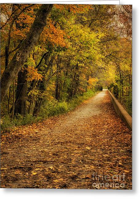 Peaceful Pathway Greeting Card by Cheryl Davis
