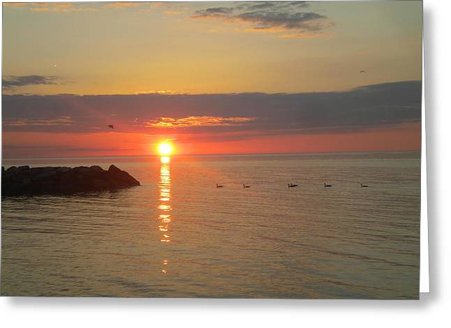 Award Winning Art Greeting Cards - Peaceful Serenity - Award Winning Sunset - Wide Angle Greeting Card by James Preston