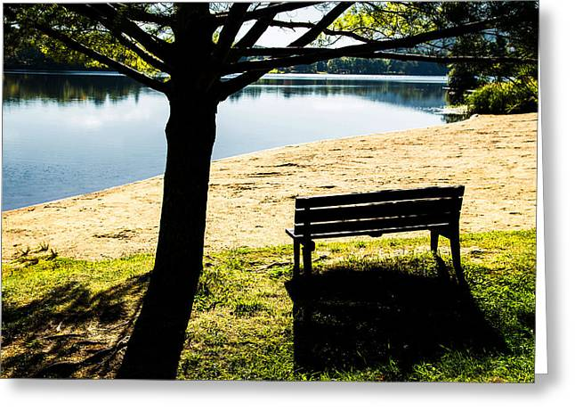 Empty Bench Greeting Cards - Peaceful Shadows Greeting Card by Karol  Livote