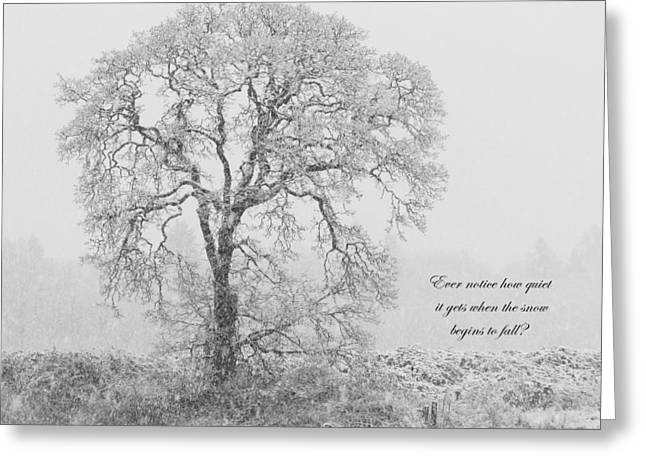 Wildlife Refuge. Greeting Cards - Peaceful Snowfall Greeting Card by Angie Vogel