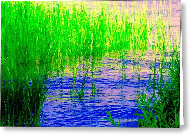 Peaceful Stream  Quebec Landscape Art Tall Grasses At The Lakeshore Waterscene Carole Spandau Greeting Card by Carole Spandau