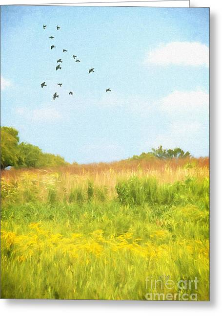 Allergy Greeting Cards - Peaceful Summer Afternoon Greeting Card by Lois Bryan