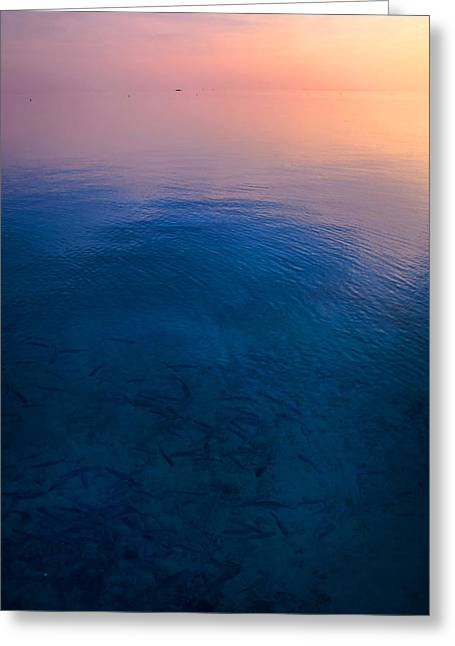 Zen Artwork Greeting Cards - Peaceful Sunrise Greeting Card by Jenny Rainbow