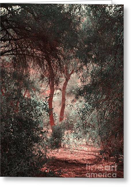 Struckle Greeting Cards - Peaceful Walk Greeting Card by Kathleen Struckle
