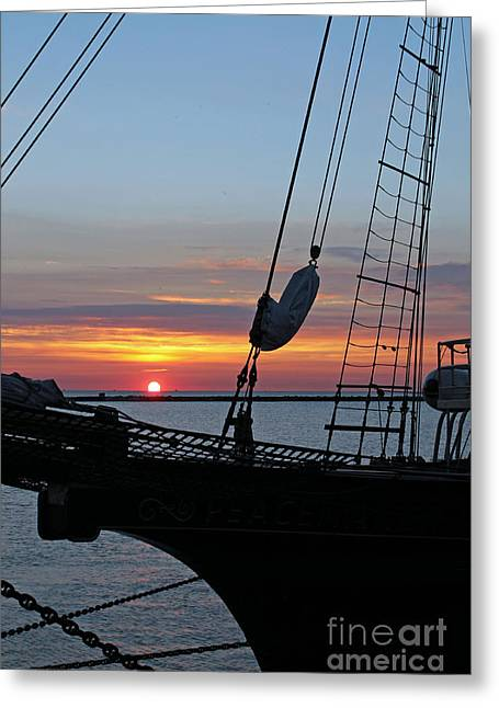 Sailing Ship Greeting Cards - Peacemaker 28 Greeting Card by Eric Curtin