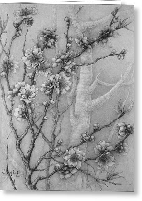 Peach Drawings Greeting Cards - Peach Blossom Greeting Card by LingKit Lo