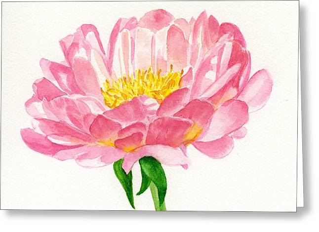 Peony Art Greeting Cards - Peach Colored Peony Blossom Greeting Card by Sharon Freeman