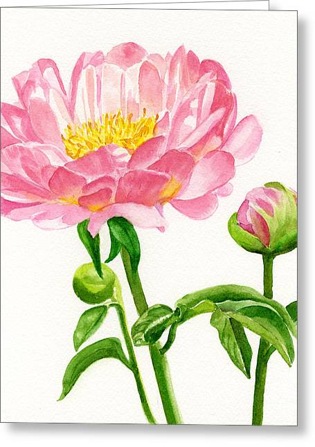 Pink Blossoms Greeting Cards - Peach Colored Peony with Buds Greeting Card by Sharon Freeman