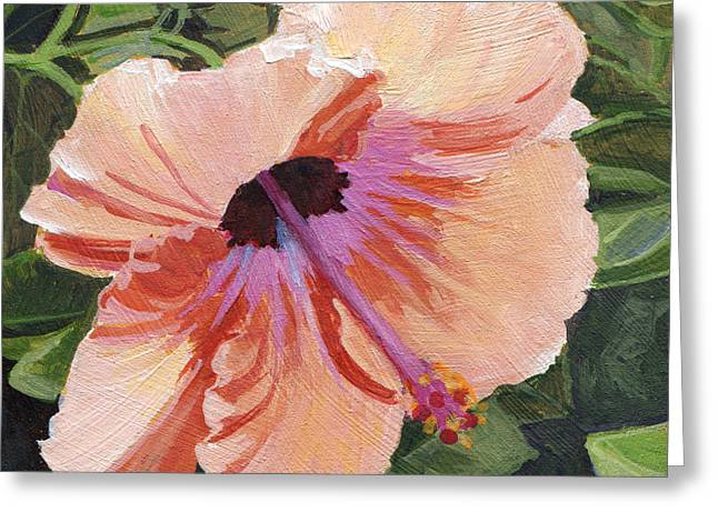 Stacy Vosberg Greeting Cards - Peach Hibiscus Greeting Card by Stacy Vosberg
