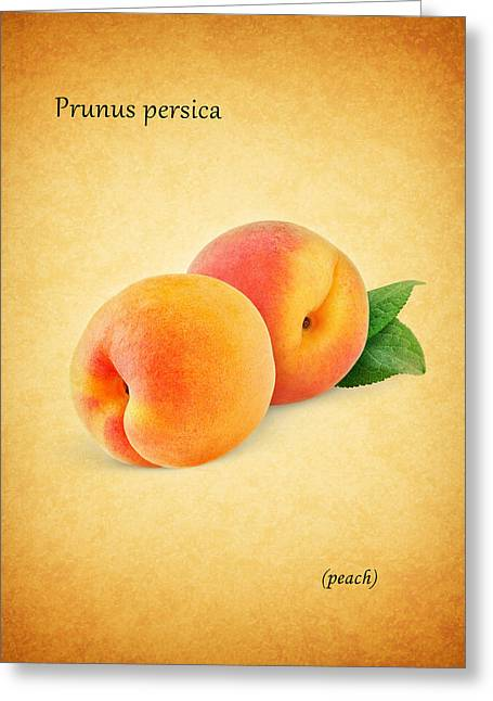 Peach Greeting Card by Mark Rogan