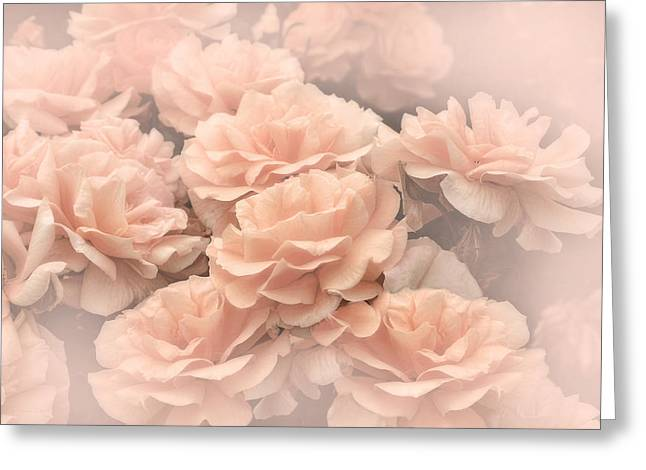 Light Peach Greeting Cards - Peach Pastels Rose Garden Greeting Card by Jennie Marie Schell
