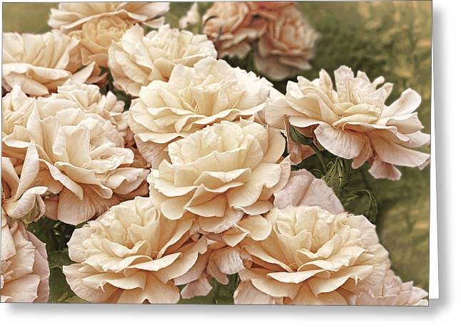 Apricot Greeting Cards - Peaches and Cream Rose Garden Greeting Card by Jennie Marie Schell
