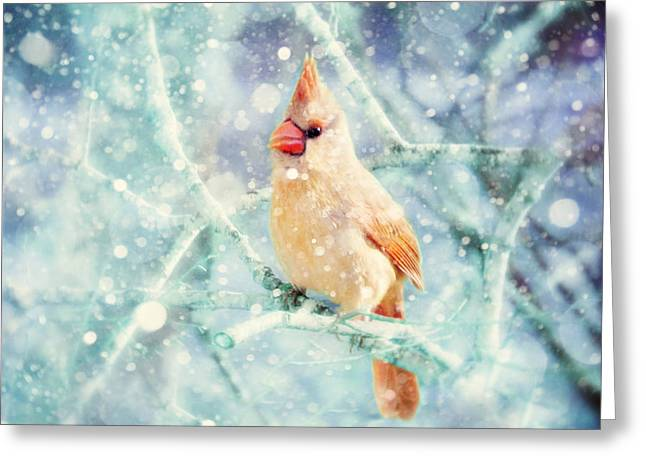 Winter Scene Photographs Greeting Cards - Peaches in the Snow Greeting Card by Amy Tyler