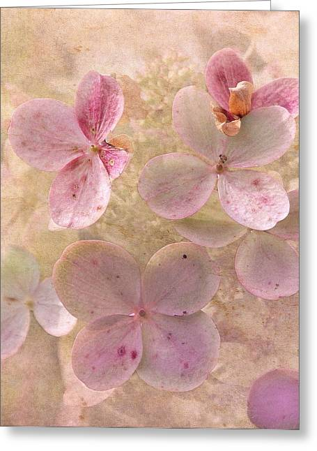 Peachy Greeting Cards - Peachy Pink Floral Greeting Card by Angie Vogel