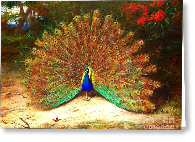 Art Reproduction Greeting Cards - Peacock and Peacock butterfly Greeting Card by Pg Reproductions