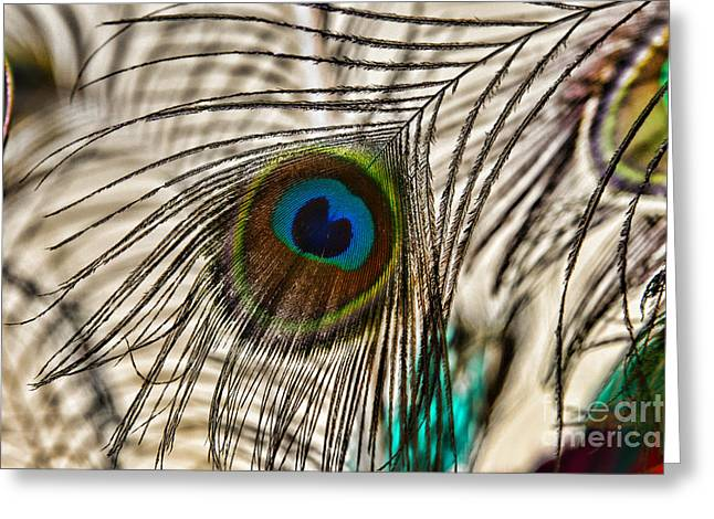 Peacock Eye Feather Greeting Card by Paul Ward