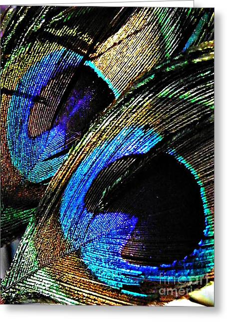 Interior Still Life Photographs Greeting Cards - Peacock Feathers Greeting Card by Sarah Loft
