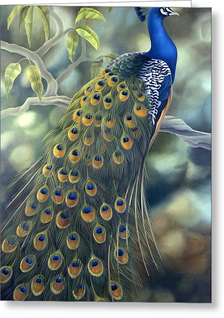 Plume Greeting Cards - Peacock Greeting Card by Laura Regan