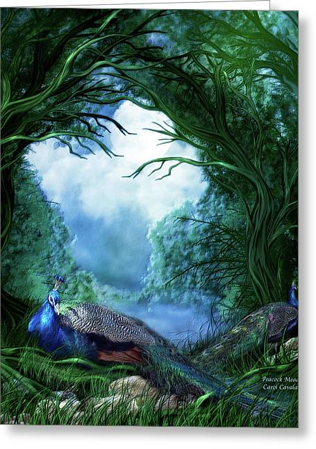 Wildlife Art Prints Greeting Cards - Peacock Meadow Greeting Card by Carol Cavalaris