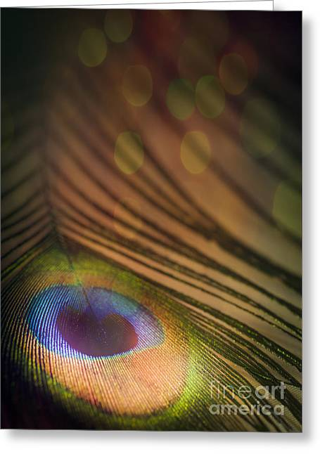 Plumed Greeting Cards - Peacock Party Greeting Card by Jan Bickerton