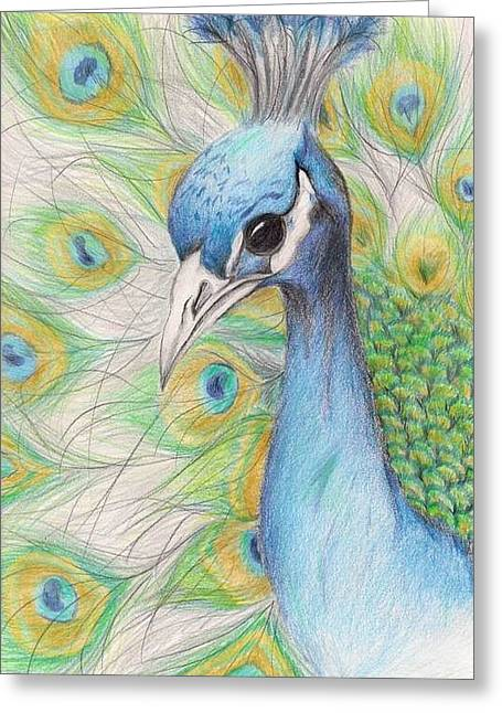 Hand Drawn Greeting Cards - Peacock Portrait Greeting Card by Laurie Pike