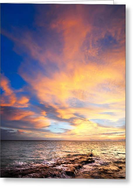 Evgeniya Vlasova Greeting Cards - Peacock Sunset. Maldives Greeting Card by Jenny Rainbow