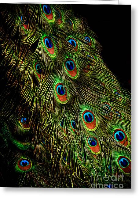 Peacock Waterfall Greeting Card by Venetta Archer