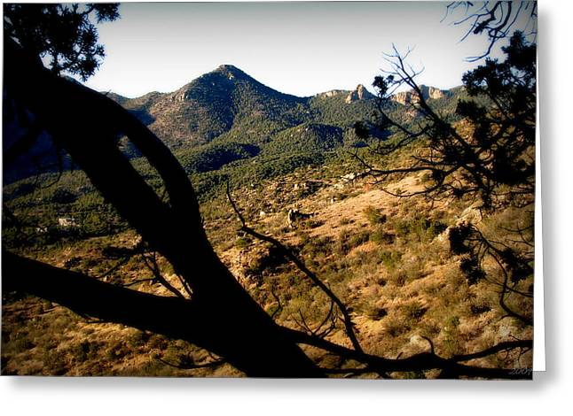 Rincon Greeting Cards - Peak 8300 Greeting Card by Aaron Burrows