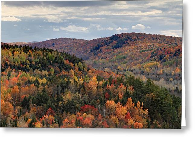 Log Cabins Greeting Cards - Peak Autumn colors on the East coast Greeting Card by Pierre Leclerc Photography