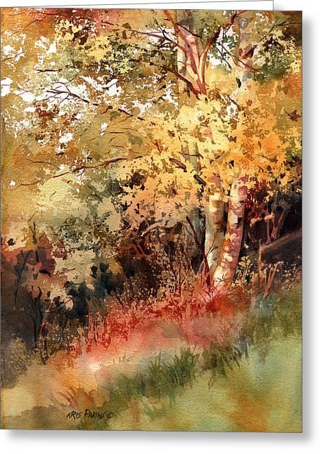 Birch Tree Greeting Cards - Peak Color Greeting Card by Kris Parins