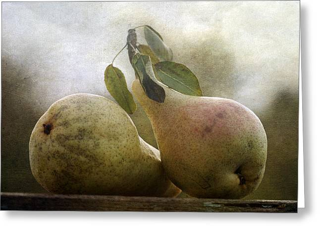 Fruit Tree Art Greeting Cards - Pears Greeting Card by Cindi Ressler