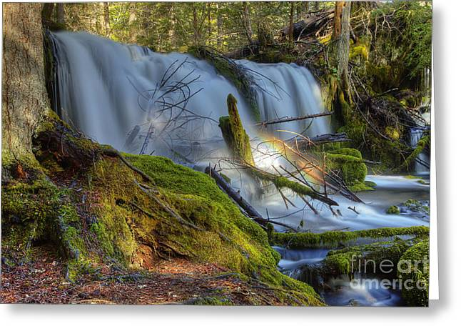 Prospect Place Greeting Cards - Pearsony Falls Greeting Card by Jim Adams