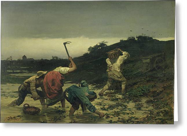Alsace Greeting Cards - Peasants Harvesting Potatoes During The Flood Of The Rhine In 1852 Oil On Canvas Greeting Card by Gustave Brion