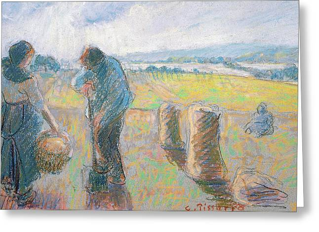 Peasants In The Fields Greeting Card by Camille Pissarro
