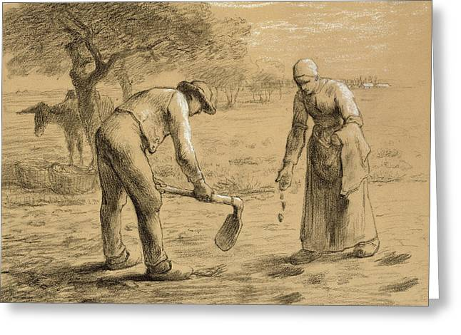 Scene Drawings Greeting Cards - Peasants planting potatoes  Greeting Card by Jean-Francois Millet