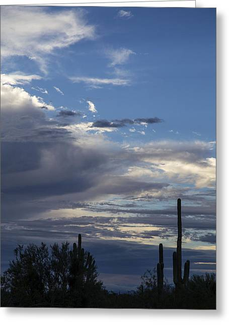 Scottsdale Lightning Greeting Cards - Peaseful Sky Greeting Card by Cathy Franklin