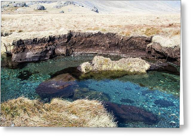 Peat Eroded On The River Esk Greeting Card by Ashley Cooper