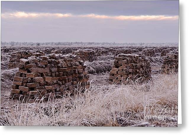Peat Greeting Cards - Peat In Winter Greeting Card by Willi Rolfes