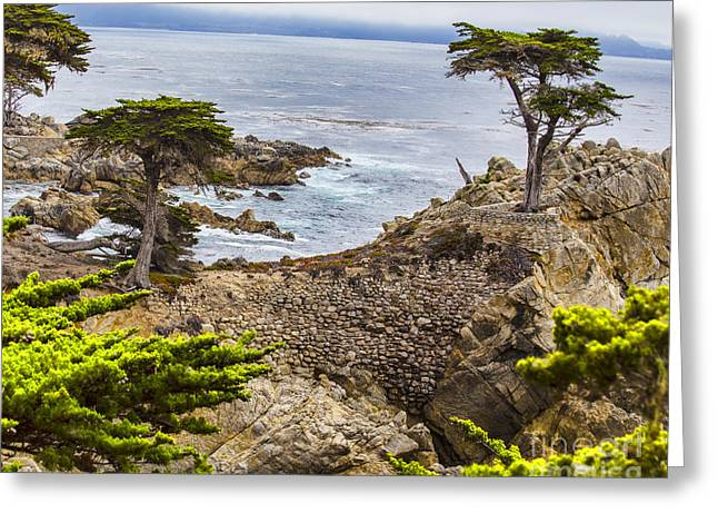 California Ocean Photography Greeting Cards - Pebble Beach California ii Greeting Card by TN Fairey