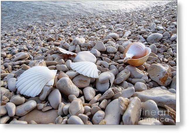 Abstract Waves Greeting Cards - Pebble beach Greeting Card by Sinisa Botas