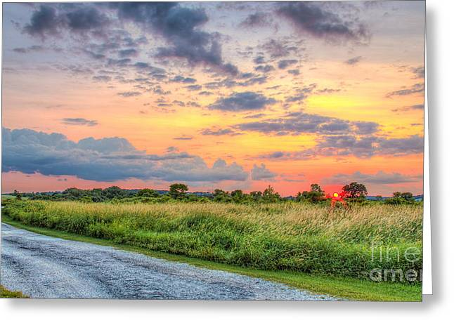 Gravel Road Greeting Cards - Pebble Creek Sunset Greeting Card by Andrew Slater